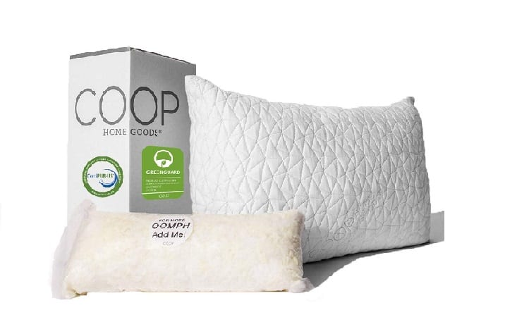 Coop Home Goods Premium Adjustable Pillow
